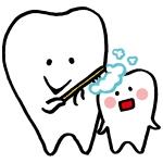 歯はどれくらい長持ちするのか